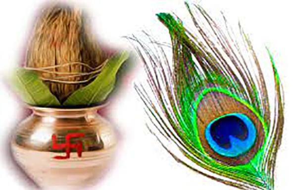 National Bird : देवी देवताओं तक को प्रिय है मोर पंख, जानें घर पर कहां रखने से हो सकता है लाभ-Hindi News