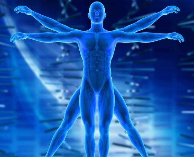क्या आप जानते है मानव शरीर में अनगिनत फंगस चिपके रहते हैं लेकिन कैसे? आइये जानते हैं..-Hindi News