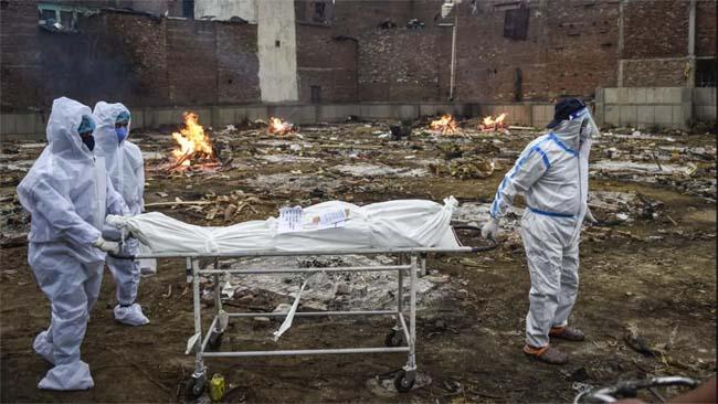 Corona Alert: कोरोना संक्रमित के शव को छूना कितना सही, जानें क्या कहते हैं एक्सपर्ट-Hindi News